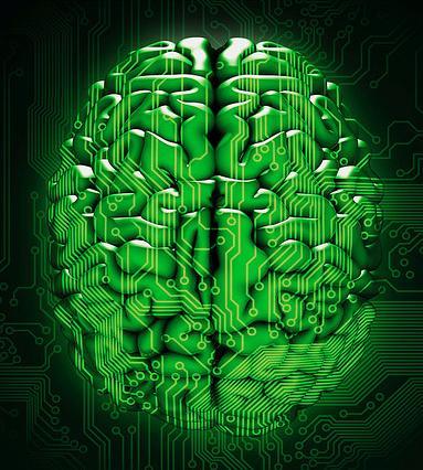 neuromarketing brain