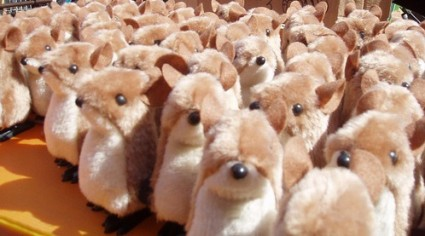 Are we lemmings of consensus?