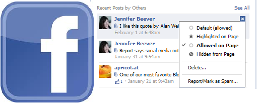 Your Facebook Company Page: How to Show Posts by Others